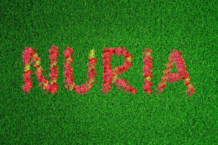 FlowerGrassRed Nuria