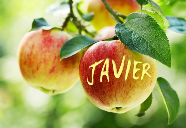 Apple03 Javier