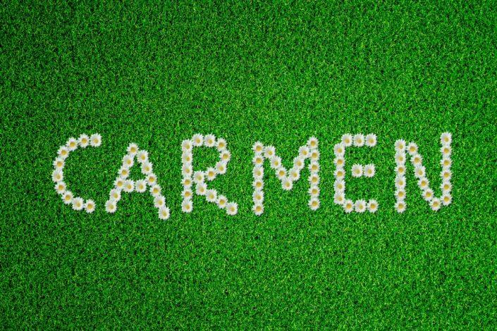 FlowerGrassWhite Carmen