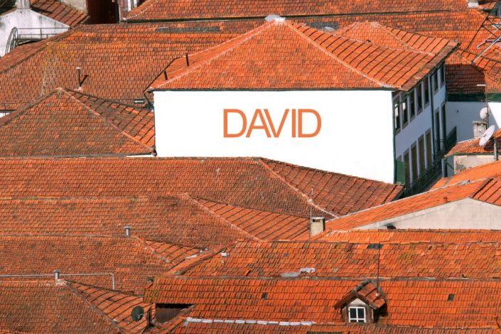 WallTown01 David
