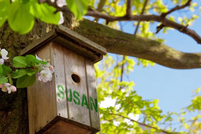 10849 Birdhouse