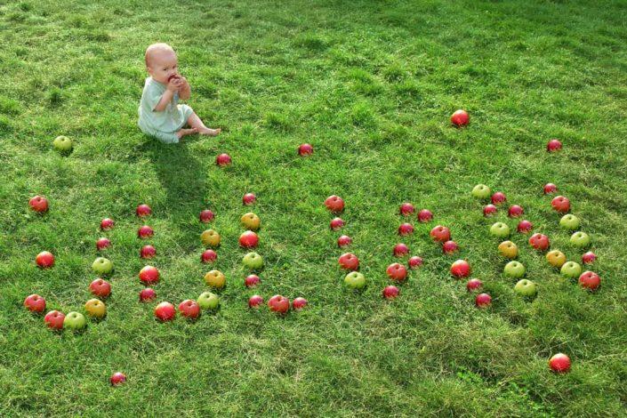 10884 BabyFruits