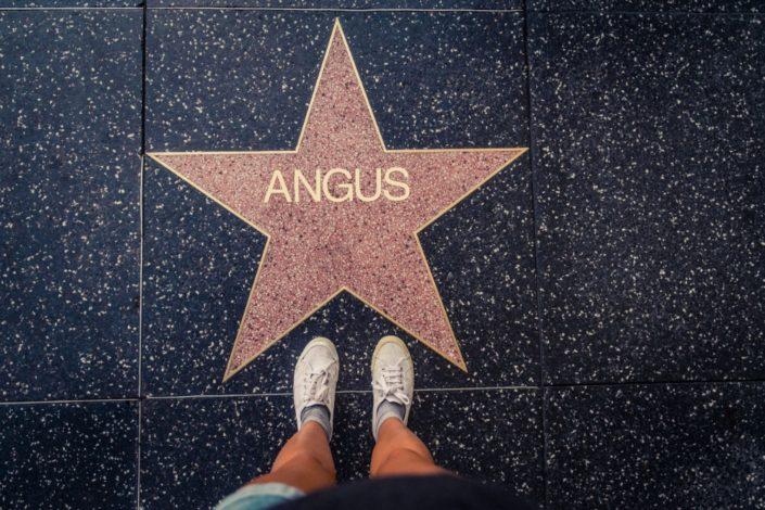 N014 HollywoodStar